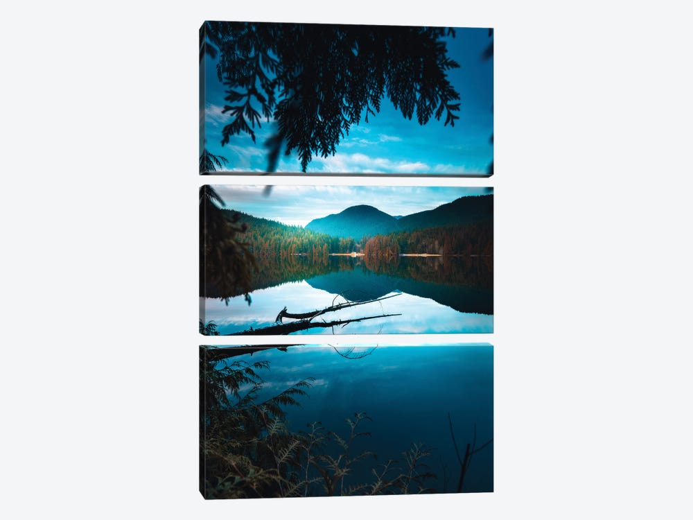Framed By Nature by Zach Doehler 3-piece Canvas Artwork