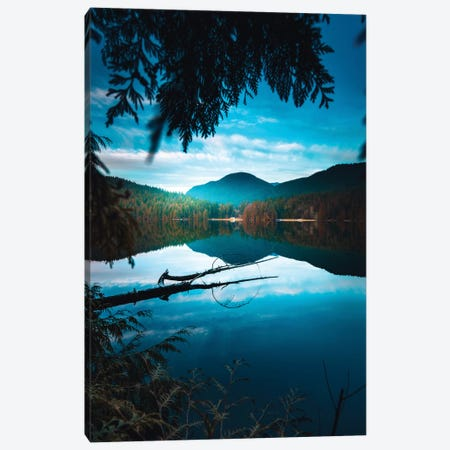 Framed By Nature Canvas Print #ZDO71} by Zach Doehler Canvas Art Print