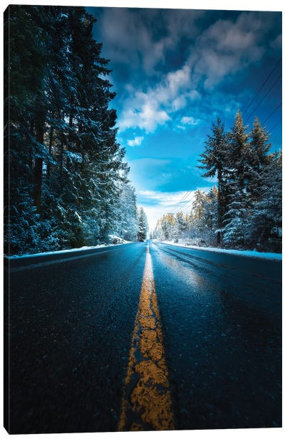 Frozen Roads Canvas Art Print