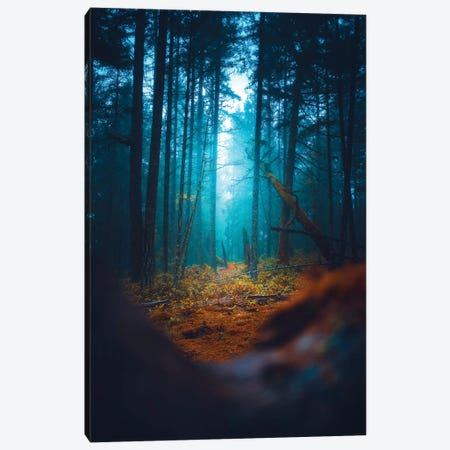 Parallax Canvas Print #ZDO74} by Zach Doehler Canvas Art