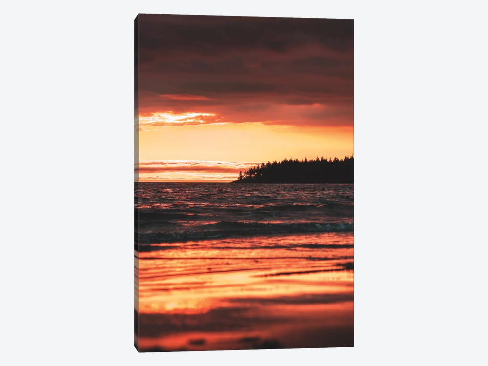 Rose Gold by Zach Doehler 1-piece Canvas Wall Art