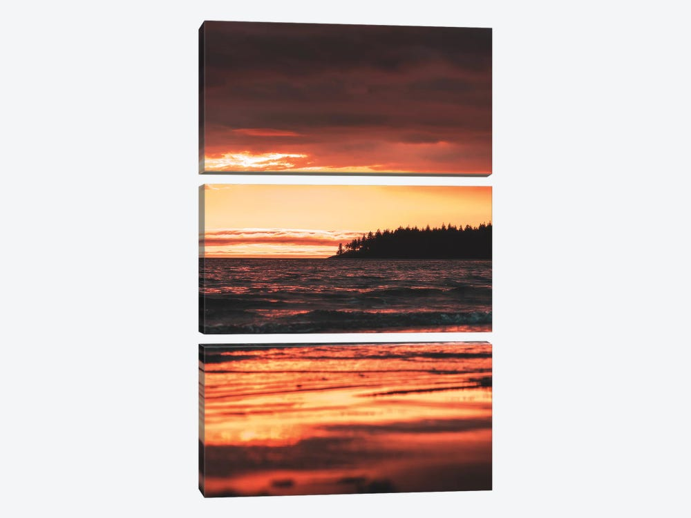 Rose Gold by Zach Doehler 3-piece Canvas Wall Art