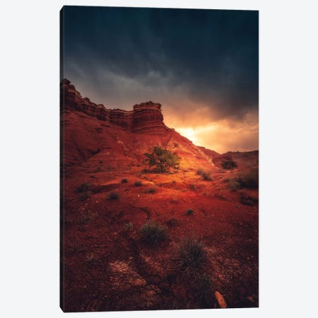 Desolation Canvas Print #ZDO84} by Zach Doehler Canvas Print