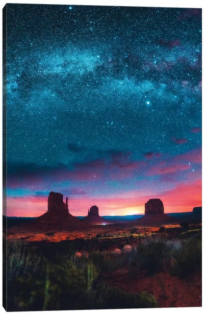 Galactic Canopy Canvas Art Print