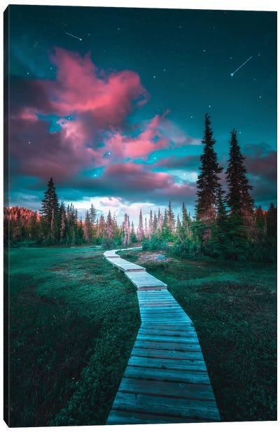 Intergalactic Pathways Canvas Art Print