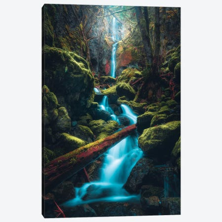 Tucked Away Canvas Print #ZDO95} by Zach Doehler Canvas Wall Art