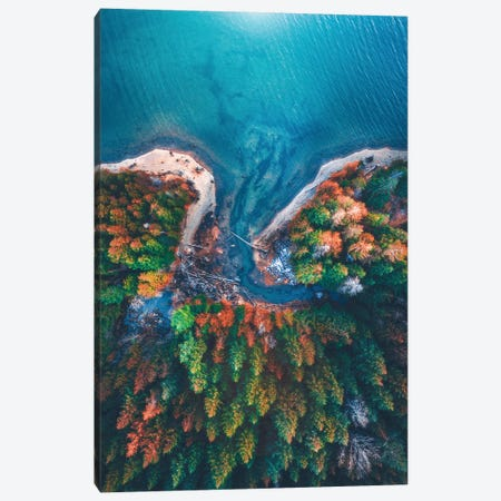 Patterns of Nature Canvas Print #ZDO9} by Zach Doehler Art Print
