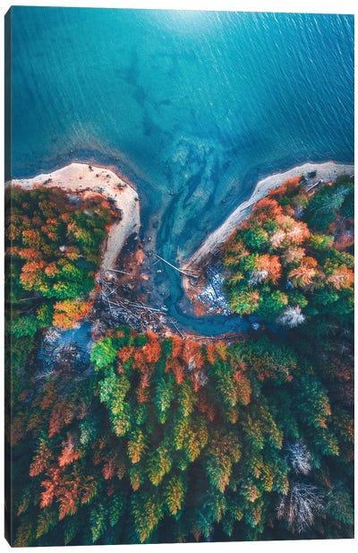 Patterns of Nature Canvas Art Print
