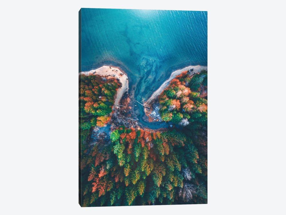 Patterns of Nature by Zach Doehler 1-piece Canvas Art Print