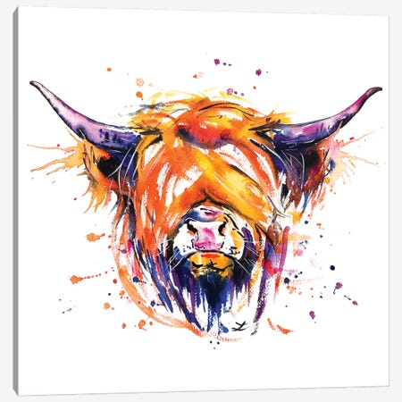 Scottish Highland Cow Canvas Print #ZDZ100} by Zaira Dzhaubaeva Canvas Art