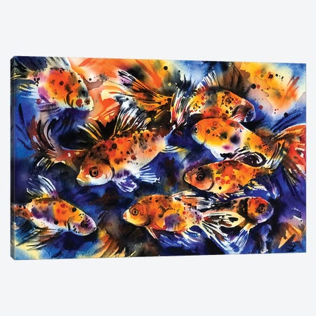 Shubunkin Goldfish Canvas Print #ZDZ102} by Zaira Dzhaubaeva Canvas Artwork