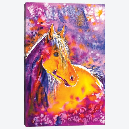 Sunny Mare Canvas Print #ZDZ109} by Zaira Dzhaubaeva Canvas Wall Art