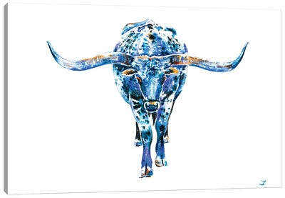 Texas Longhorn Canvas Art Print