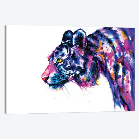 Tiger Glance 3-Piece Canvas #ZDZ115} by Zaira Dzhaubaeva Canvas Art