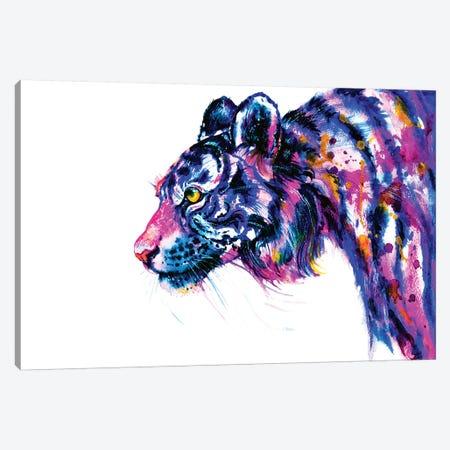 Tiger Glance Canvas Print #ZDZ115} by Zaira Dzhaubaeva Canvas Art