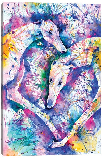 Transcendent Greyhounds Canvas Art Print