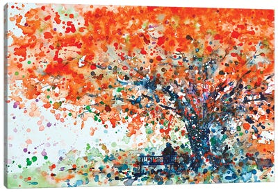 Under The Shade Of The Flamboyant Canvas Art Print