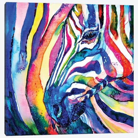 Zebra Canvas Print #ZDZ132} by Zaira Dzhaubaeva Art Print