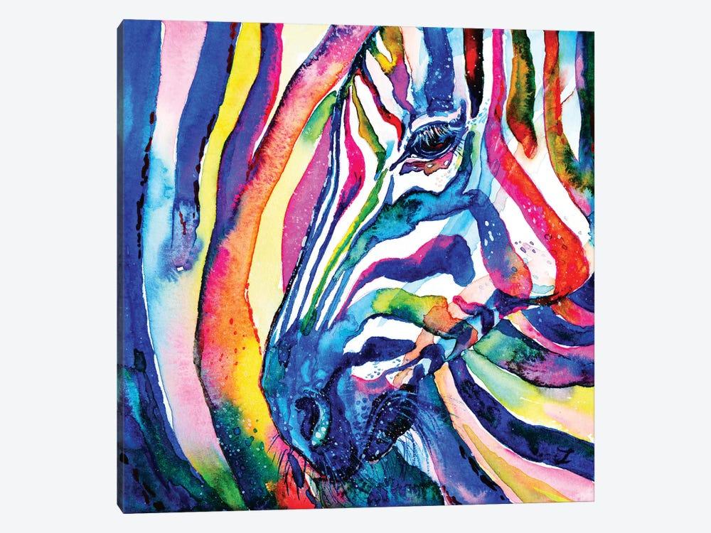 Zebra by Zaira Dzhaubaeva 1-piece Canvas Wall Art