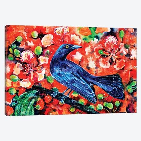 Chango on the Flamboyant Tree Watercolor   Canvas Print #ZDZ138} by Zaira Dzhaubaeva Canvas Print