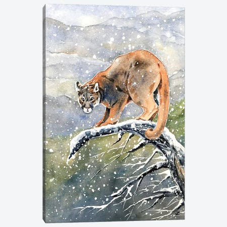 Cougar Watercolor  Canvas Print #ZDZ140} by Zaira Dzhaubaeva Canvas Artwork