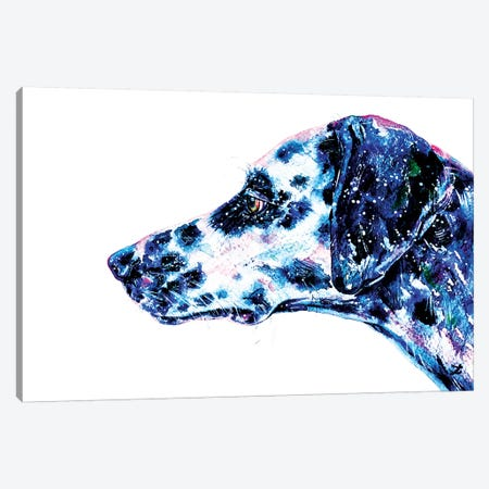 Dalmatian Watercolor   Canvas Print #ZDZ141} by Zaira Dzhaubaeva Canvas Art