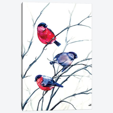 Eurasian Bullfinches Watercolor   Canvas Print #ZDZ142} by Zaira Dzhaubaeva Canvas Wall Art