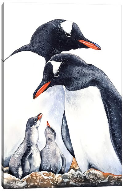 Happy Gentoo Family  Canvas Art Print