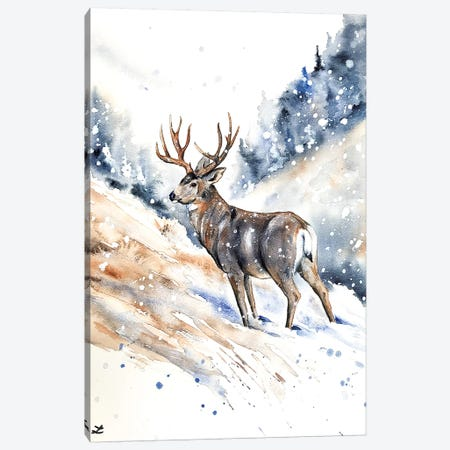 Mule Deer Buck Watercolor  Canvas Print #ZDZ153} by Zaira Dzhaubaeva Art Print