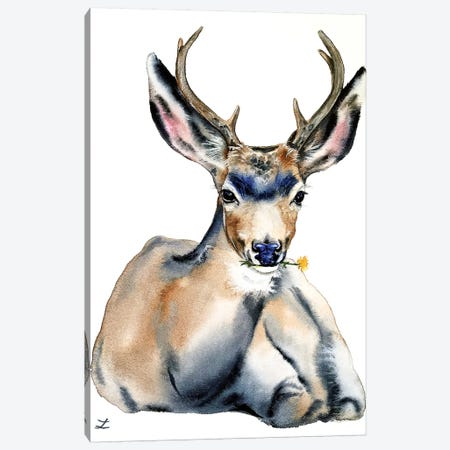 Resting Deer Watercolor   Canvas Print #ZDZ159} by Zaira Dzhaubaeva Canvas Art Print