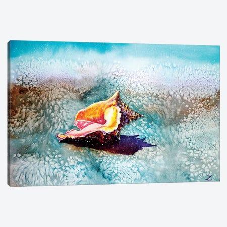 Shell   3-Piece Canvas #ZDZ161} by Zaira Dzhaubaeva Canvas Art