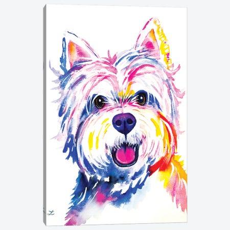 Westie Watercolor   Canvas Print #ZDZ167} by Zaira Dzhaubaeva Canvas Art Print