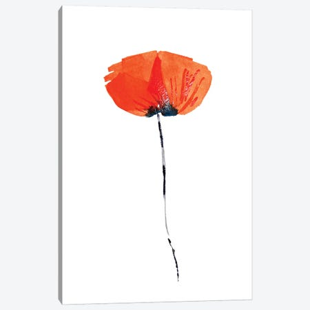 Lonely Poppy Canvas Print #ZDZ178} by Zaira Dzhaubaeva Canvas Print