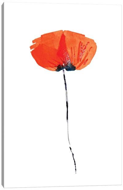 Lonely Poppy Canvas Art Print