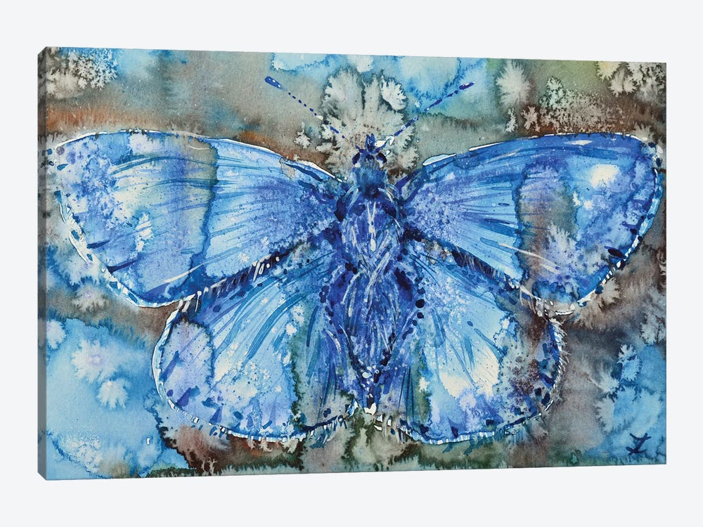 Adonis Blue by Zaira Dzhaubaeva 1-piece Canvas Art