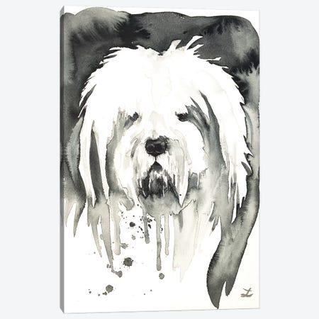 Bobtail Canvas Print #ZDZ209} by Zaira Dzhaubaeva Art Print
