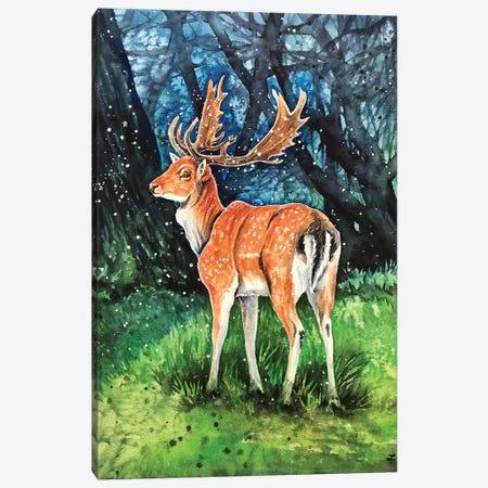 Fallow Deer Buck Canvas Print #ZDZ210} by Zaira Dzhaubaeva Canvas Wall Art