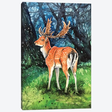 Fallow Deer Buck Canvas Print #ZDZ210} by Zaira Dzhaubaeva Canvas Wall Art