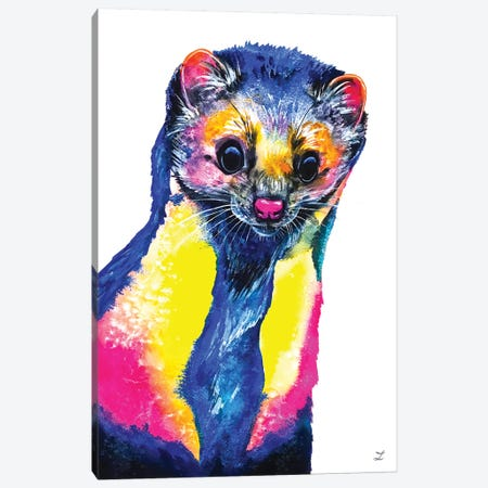 Curious Marten Canvas Print #ZDZ211} by Zaira Dzhaubaeva Canvas Artwork