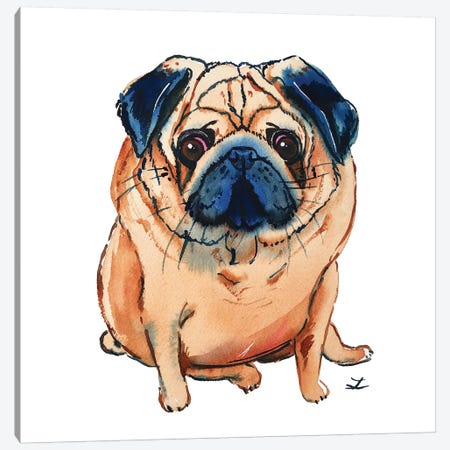 Pug Canvas Print #ZDZ213} by Zaira Dzhaubaeva Canvas Artwork