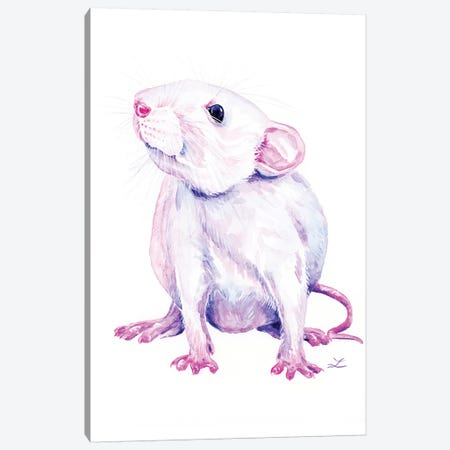 White Rat Canvas Print #ZDZ215} by Zaira Dzhaubaeva Canvas Print
