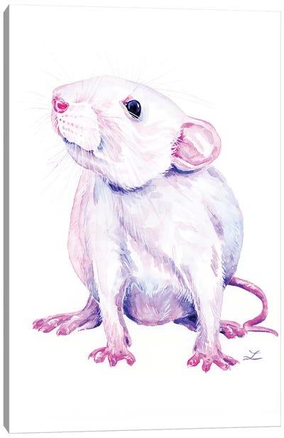 White Rat Canvas Art Print