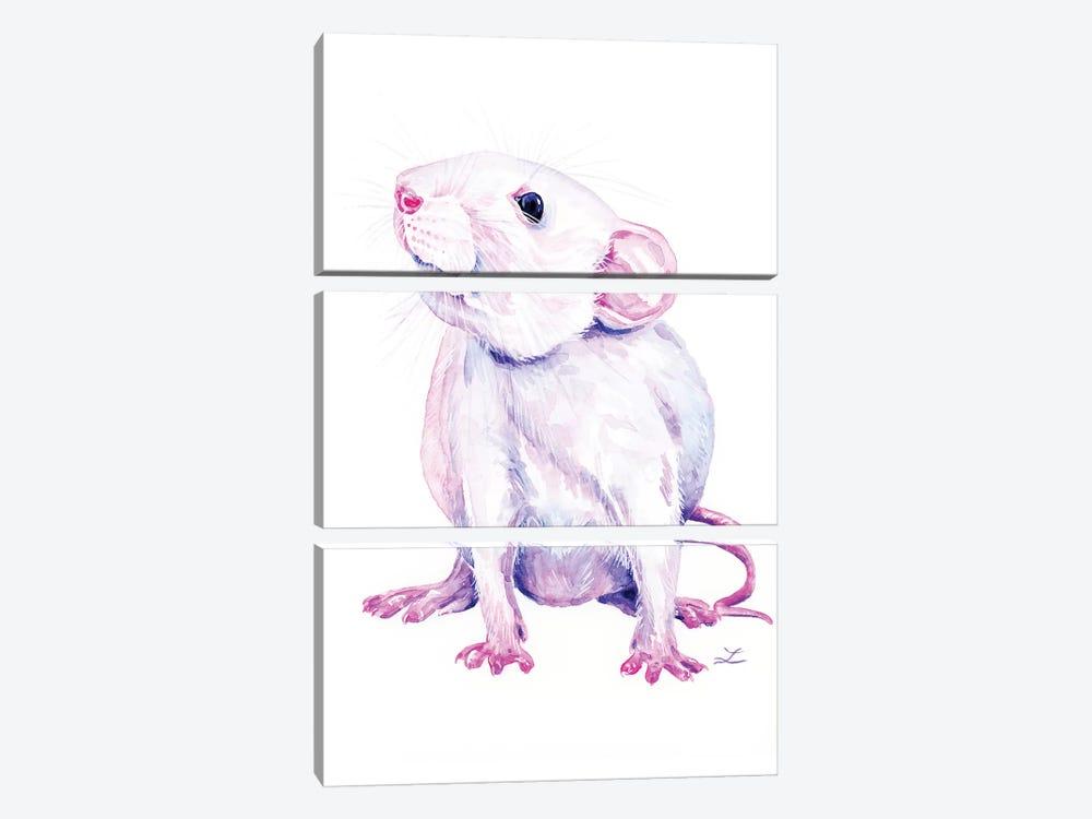 White Rat by Zaira Dzhaubaeva 3-piece Canvas Art Print