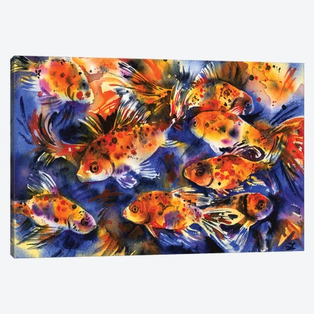 Shubunkin Goldfish Canvas Print #ZDZ222} by Zaira Dzhaubaeva Canvas Art Print