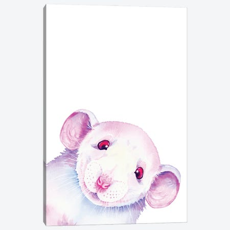 White Rat Peekaboo Canvas Print #ZDZ225} by Zaira Dzhaubaeva Canvas Artwork