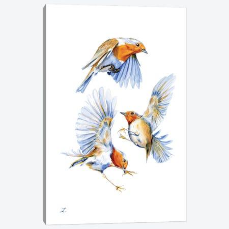 Three Robins Canvas Print #ZDZ227} by Zaira Dzhaubaeva Canvas Wall Art