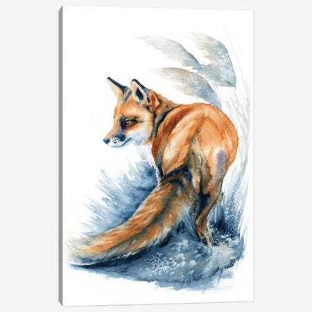 Fox In The Reeds Canvas Print #ZDZ230} by Zaira Dzhaubaeva Canvas Artwork