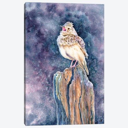 Lark, The Daybreak Troubadour Canvas Print #ZDZ237} by Zaira Dzhaubaeva Canvas Print