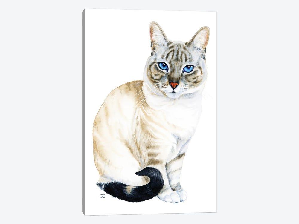 Tiramisu The Blue-Eyed Cat by Zaira Dzhaubaeva 1-piece Canvas Artwork