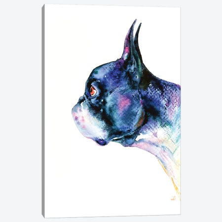 Boston Terrier Canvas Print #ZDZ23} by Zaira Dzhaubaeva Art Print